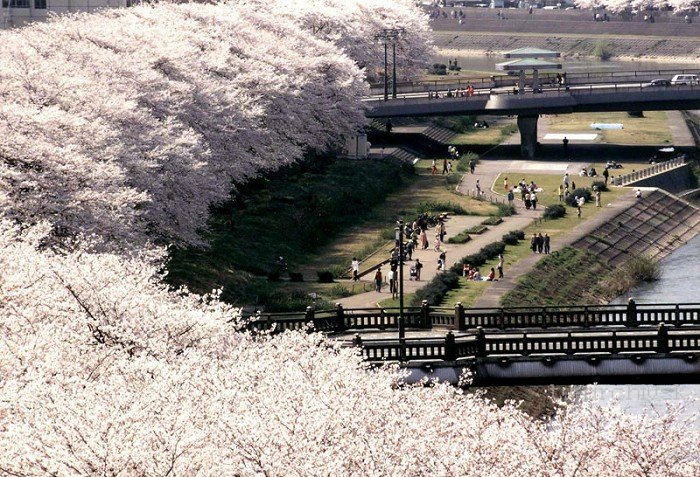 Japonsko - má láska