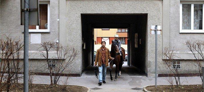 Kôň na balkóne