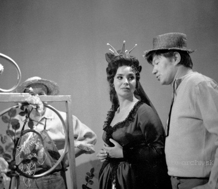 O pasáčkovi a labutích princeznách (1968)