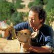 Billy Crystal (Mitch Robbins)