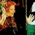 Anicka s lískovými orísky (1993)