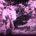 V blouznění (1928)