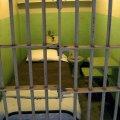 Peklo zvané Alcatraz