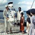 Sněhulák pro Afriku (1977)