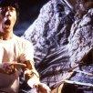 Jackie Chan (Asian Hawk)