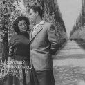 Fotografia z filmu Previerka lásky (1956). Alejou rozkvitnutých stromov kráčajú: Hana Hegerová (Ľudmila Petušková) a Elo Romančík (Juraj Horárik)