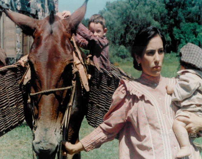 O Quatrilho (1995)