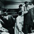 Groucho Marx (Otis B. Driftwood), Allan Jones (Riccardo Barone), Chico Marx (Fiorello), Harpo Marx (Tomasso), Edna Bennett (Maid), Inez Palange