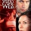 Pavúčia sieť (2001)