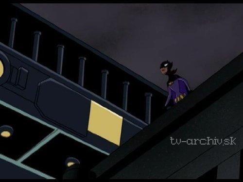 Batman víťazí (2004)
