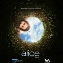 Alica v krajine zázrakov (2009)