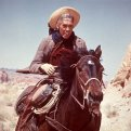 James Coburn (Luke Matthews)