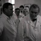 Ilja Prachař (Docent), Zdenek Stepánek (Professor Hosek)