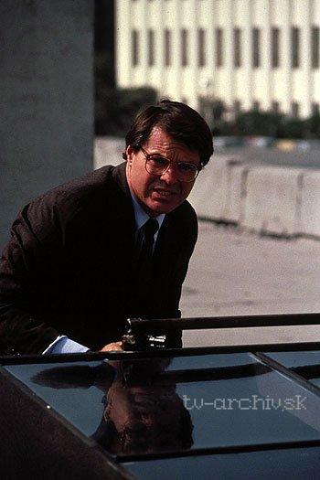 V službách zákona (1989)