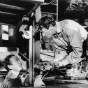 David Niven (Miller), Gregory Peck (Mallory)
