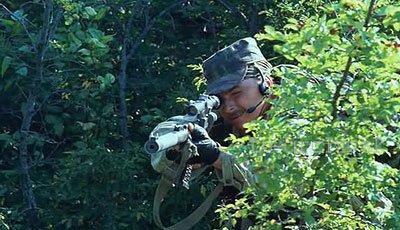 Grozovye vorota (2006)