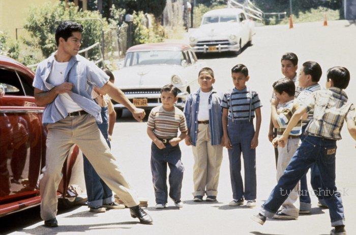 Moja rodina (1995)