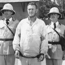 Steve McQueen (Henri 'Papillon' Charriere), William Smithers (Warden Barrot)