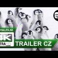 Putování tučňáků: Volání oceánu (2016)