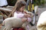 Naša írska farma: Nový začiatok