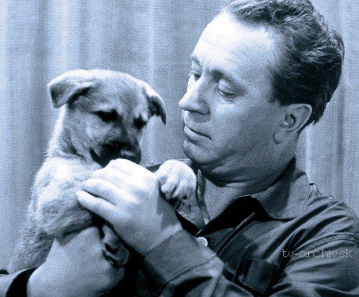 Táto, sežeň štěně! 1964